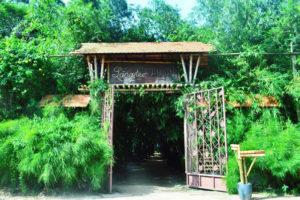 Du lịch làng tre Phú An – Bình Dương